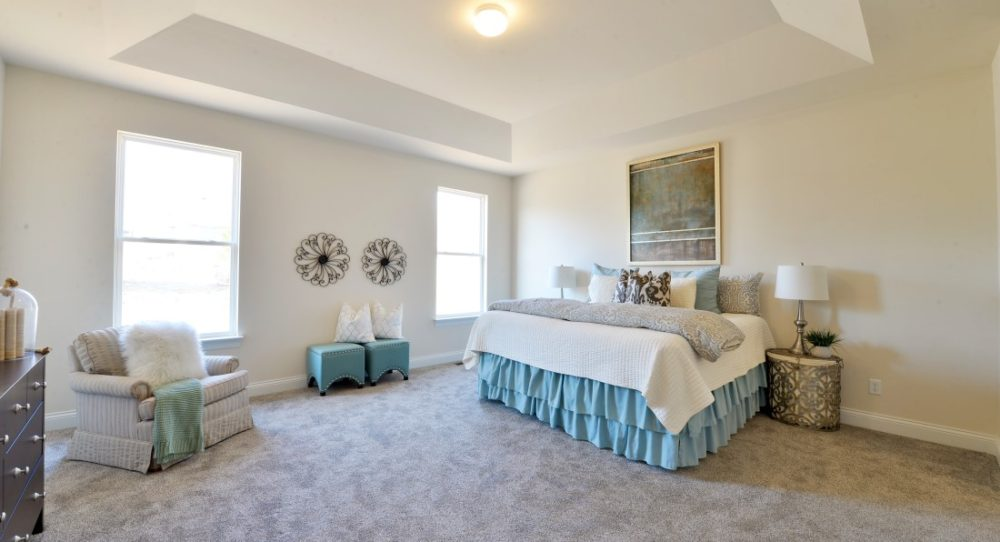 The spacious master bedroom has a spectacular cove ceiling